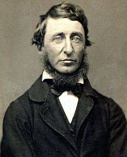 For Henry David Thoreau 95 Quotes are available